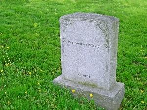 Wrongful death lawyer in Ann Arbor
